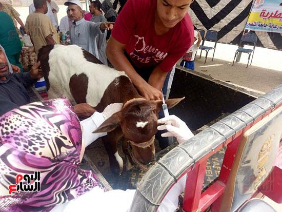 حياة-كريمة-تتواصل-لدعم-الفقراء-والقري-الأكثر-إحتياجاً-بمحافظات-مصر-(17)
