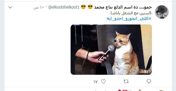 اللى اتجوزو اخدو ايه (15)
