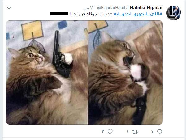 اللى اتجوزو اخدو ايه (22)