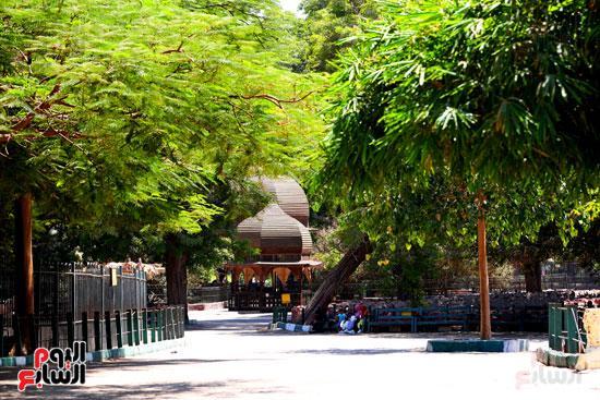 الاشجار الخضراء بحديقة  حيوان الجيزة