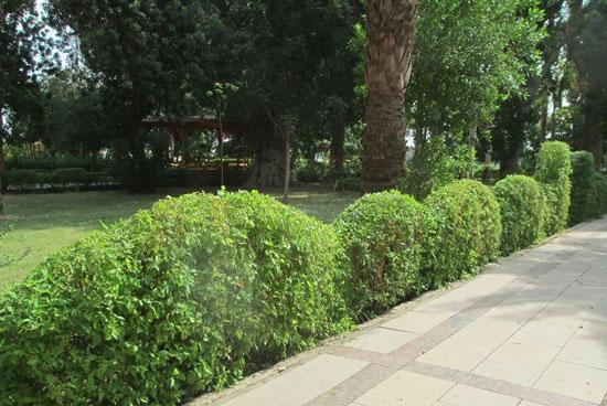 الحديقة-النباتية--(7)
