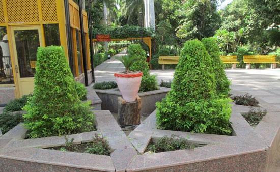 الحديقة-النباتية--(5)