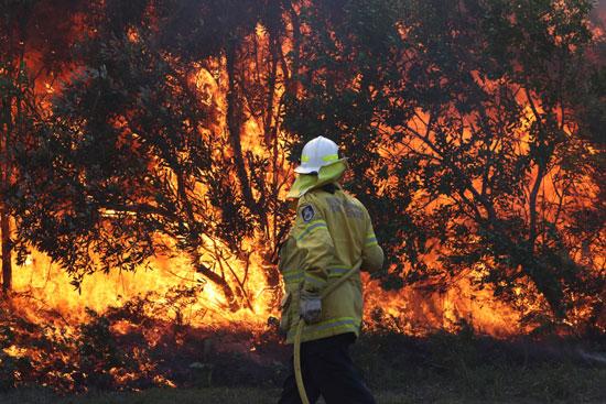 محاولة-رجال-الإطفاء-السيطرة-على-الحرائق