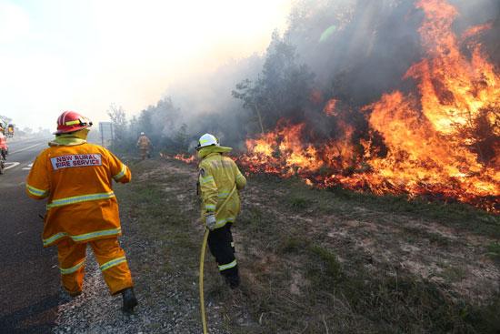رجال-الإطفاء-يحاولون-السيطرة-على-الحرائق