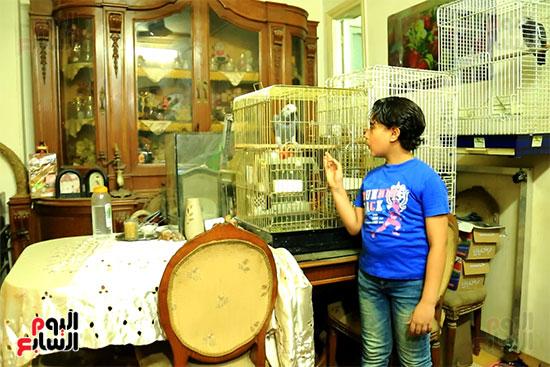 موكلى مصر (16)