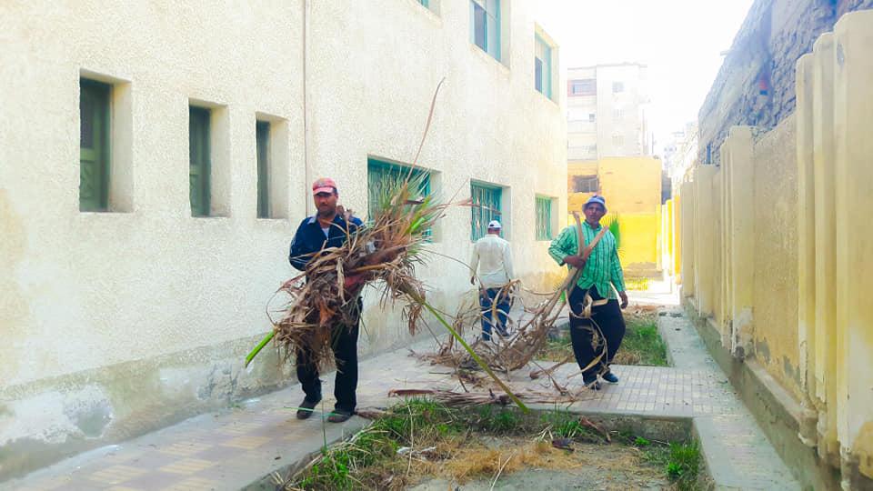 جانب من حملة النظافة بنطاق مدارس المنصورة (8)