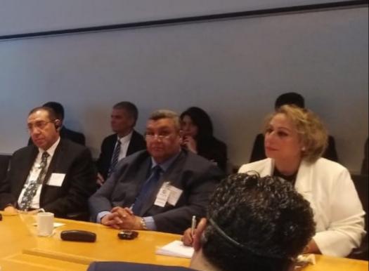 المدير التنفيذى لصندوق النقد الدولى ووفد لجنة الخطة والموازنة  (6)