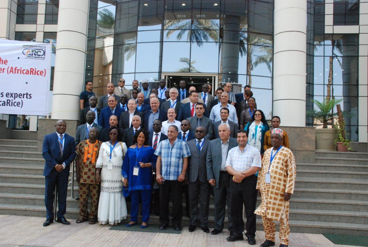 اجتماعات مركز الارز الافريقيى (3)