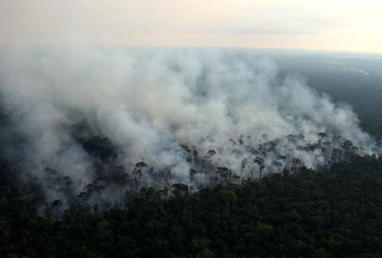 تجدد اندلاع الحرائق فى غابات الأمازون