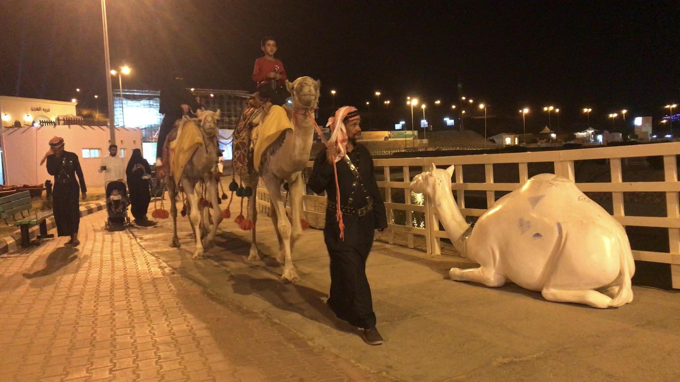 استعراضات ليلية بالإبل لإسعاد الأطفال والأسر فى السعودية (5)