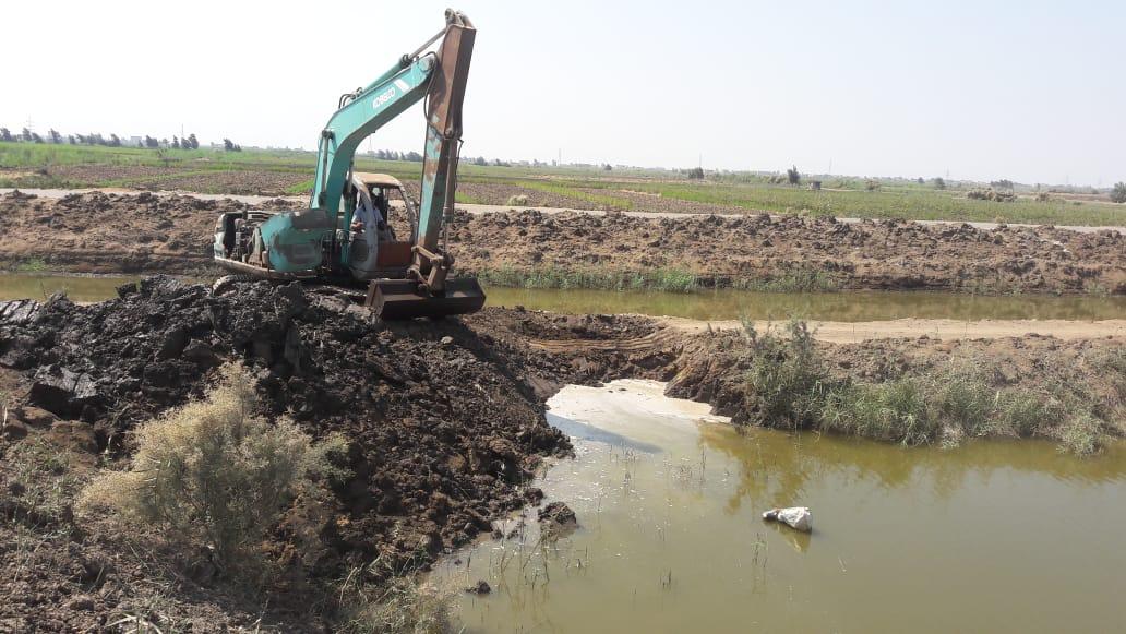 تطهير 165 فدانا من المزارع السمكية المخالفة بجنوب بورسعيد (4)