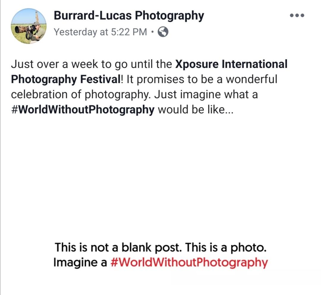 صور الحملة الإعلامية تخيل عالم بدون صور (1)