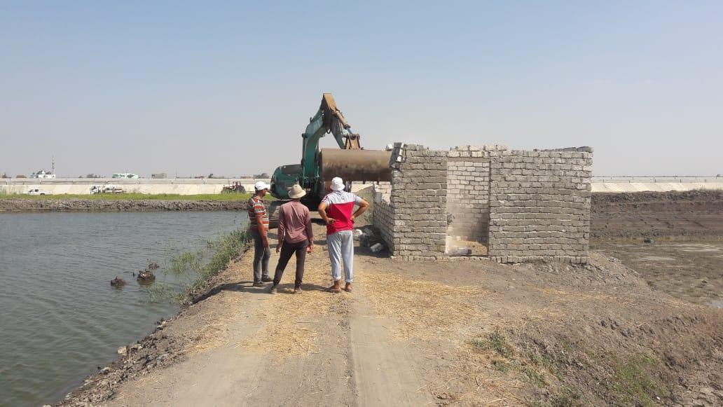 تطهير 165 فدانا من المزارع السمكية المخالفة بجنوب بورسعيد (6)