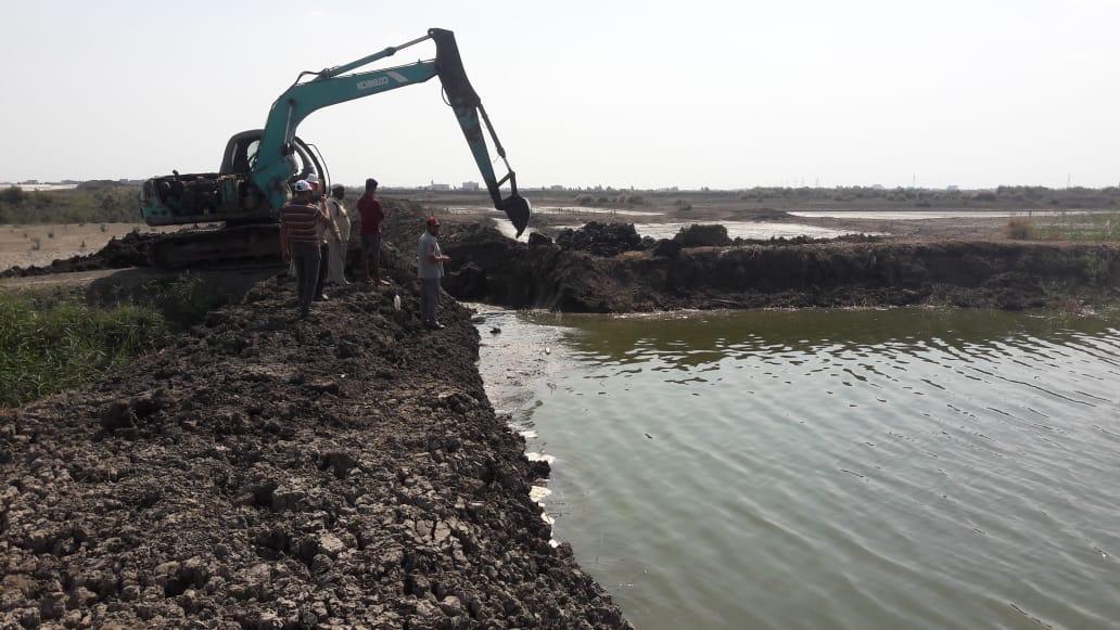 تطهير 165 فدانا من المزارع السمكية المخالفة بجنوب بورسعيد (5)