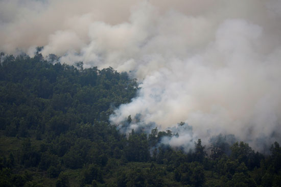 الدخان يغطى مساحات شاسعة