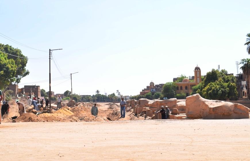 شاهد أعمال الحفائر وإستخراج صف من الكباش (5)