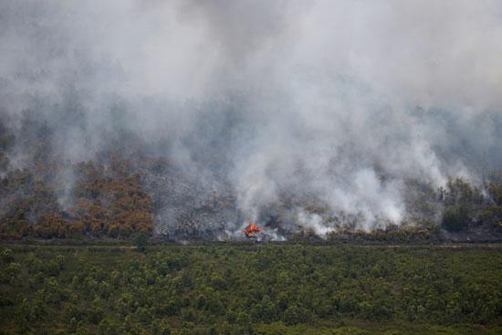 الدخان يتصاعد ويغطى مساحات واسعة