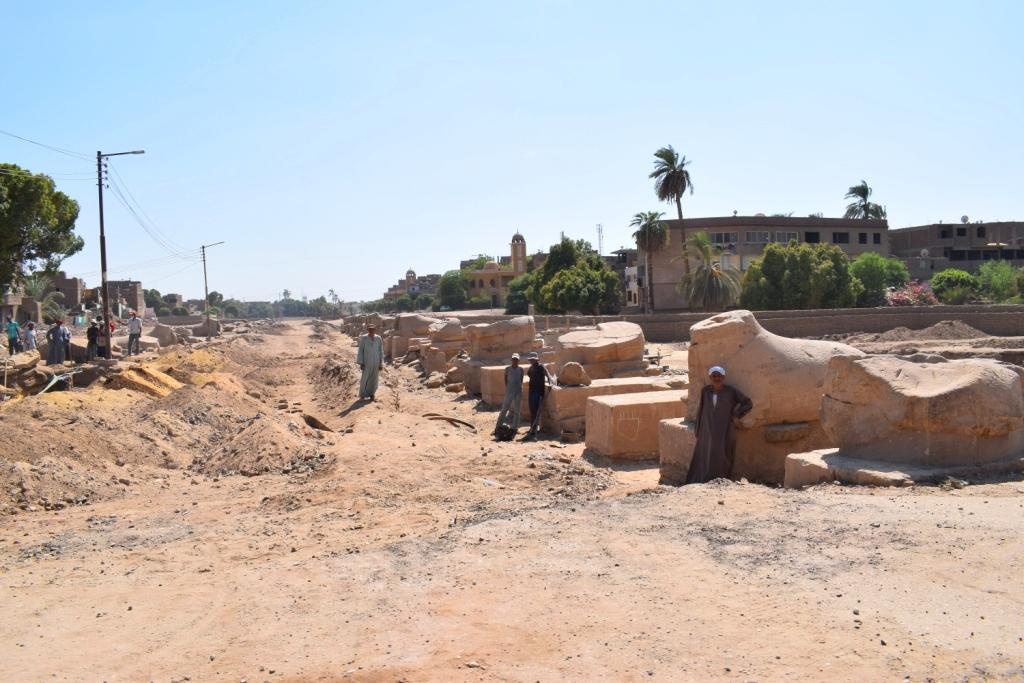 شاهد أعمال الحفائر وإستخراج صف من الكباش (6)