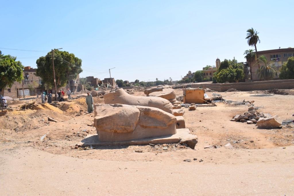 شاهد أعمال الحفائر وإستخراج صف من الكباش (7)