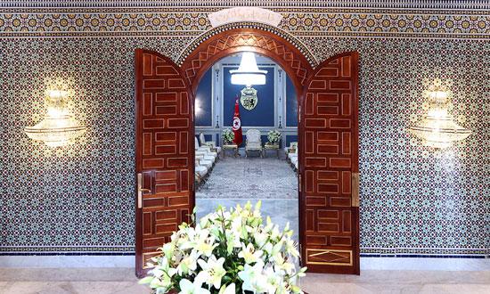 قصر قرطاج (3)