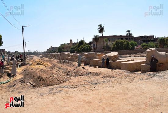 مشروع-إحياء-طريق-الكباش-العالمي-يتخذ-خطوات-جادة--(5)