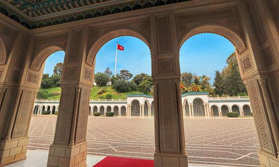 قصر قرطاج (15)