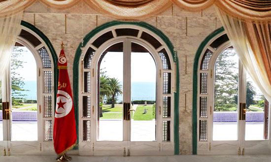 قصر قرطاج (2)