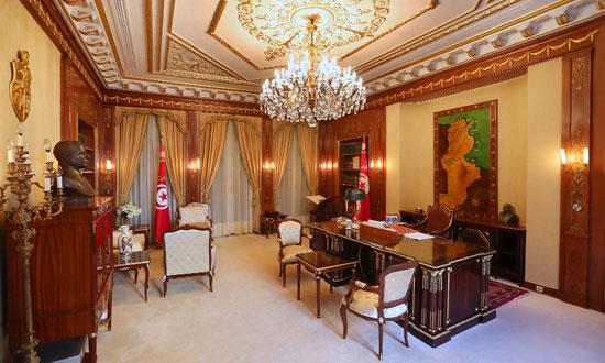 قصر قرطاج (18)