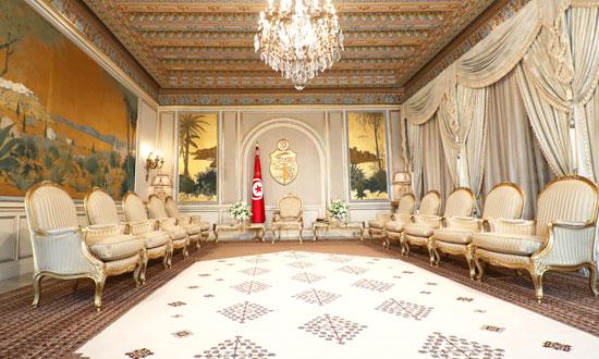 قصر قرطاج (21)