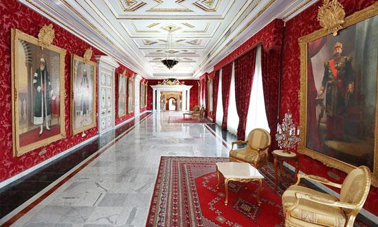 قصر قرطاج (7)