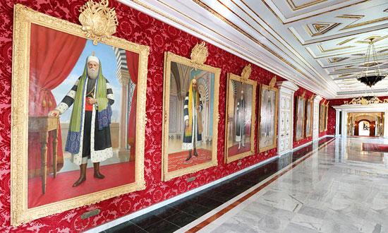 قصر قرطاج (10)