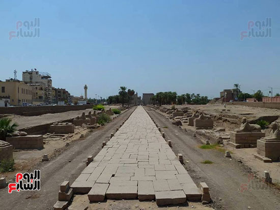 المشروع-يشمل-رحلة-سياحية-من-معبد-الأقصر-لمعابد-الكرنك