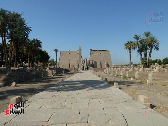 طريق-الكباش-الفرعونى-يستعد-للعودة-لتاريخه-القديم-لخدمة-السائحين
