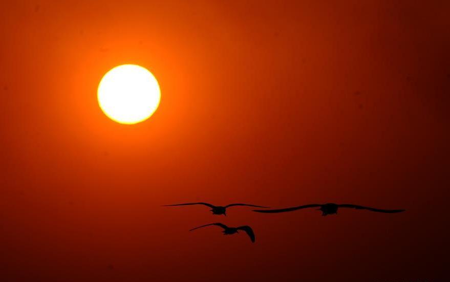 الشمس لحظة مغيبها فى الكويت