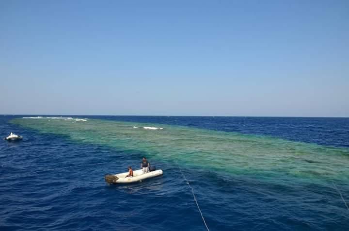 واقع الغوص البعيدة جنوب البحر الأحمر (1)