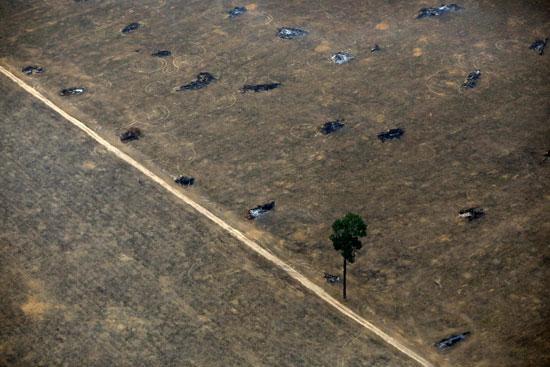تحول الأراضى الزراعية إلى صحراء