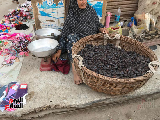 كفاح سيدة عجوز في بيع البلح.
