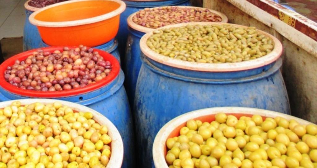 مطروح وسيوة تنتجان أفضل أنواع الزيتون لإنتاج الزيت والتخليل (10)