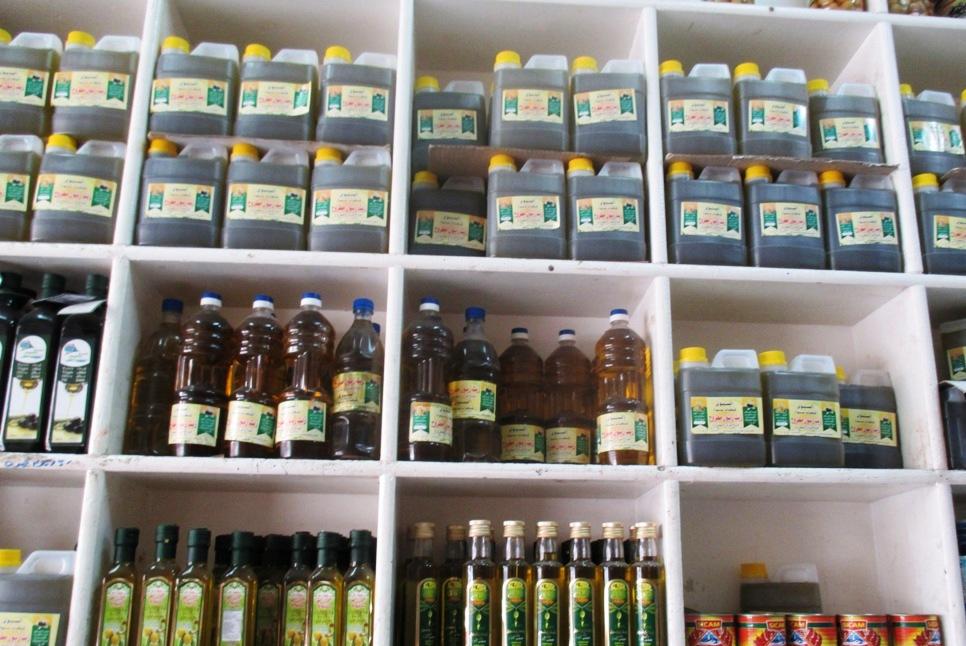 مطروح وسيوة تنتجان أفضل أنواع الزيتون لإنتاج الزيت والتخليل (11)