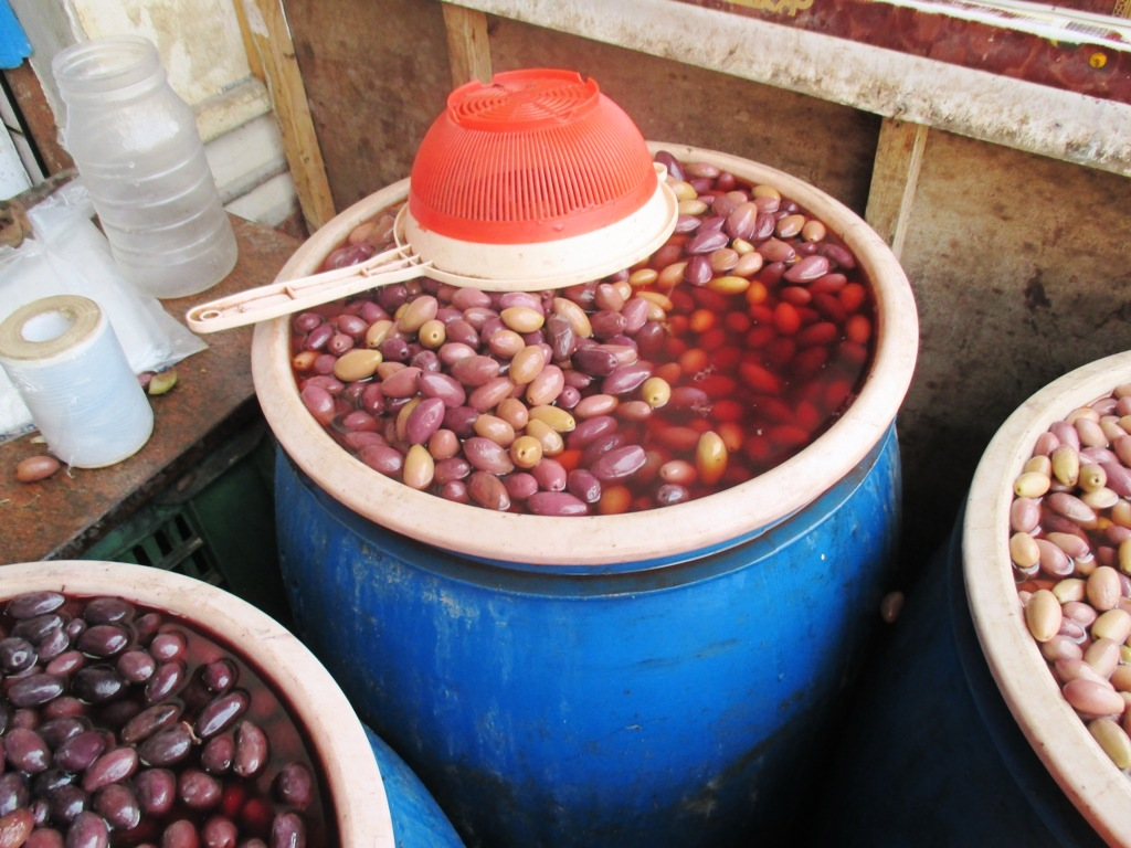 مطروح وسيوة تنتجان أفضل أنواع الزيتون لإنتاج الزيت والتخليل (7)