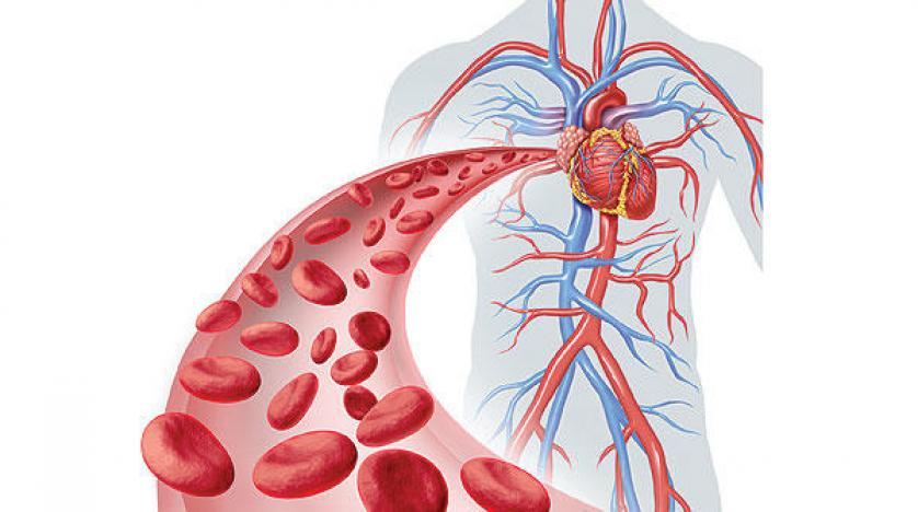 ضيق الاوعية الدموية