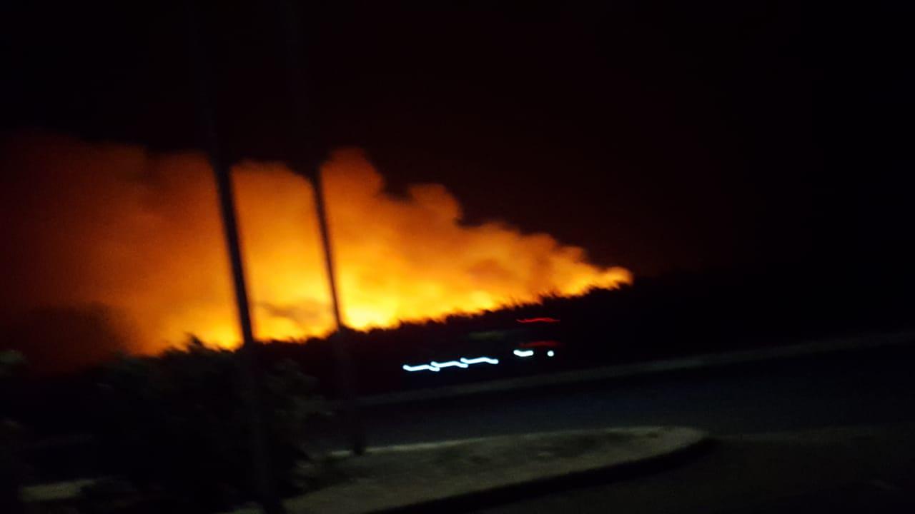 حريق الغابة الشجرية بالغردقة (1)