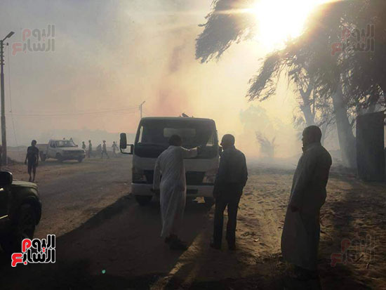حريق-هائل-في-مزارع-نخيل-بقرية-القصر-بالوادي-الجديد-(17)