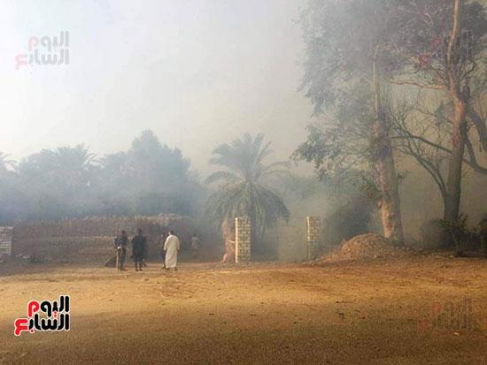 حريق-هائل-في-مزارع-نخيل-بقرية-القصر-بالوادي-الجديد-(14)