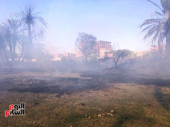 حريق-هائل-في-مزارع-نخيل-بقرية-القصر-بالوادي-الجديد-(9)