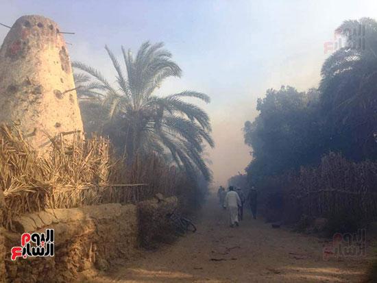 حريق-هائل-في-مزارع-نخيل-بقرية-القصر-بالوادي-الجديد-(12)