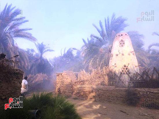 حريق-هائل-في-مزارع-نخيل-بقرية-القصر-بالوادي-الجديد-(25)