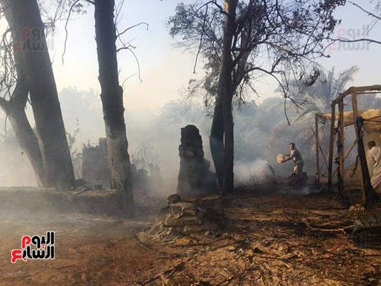 حريق-هائل-في-مزارع-نخيل-بقرية-القصر-بالوادي-الجديد-(22)