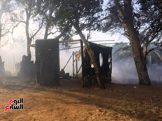 حريق-هائل-في-مزارع-نخيل-بقرية-القصر-بالوادي-الجديد-(16)