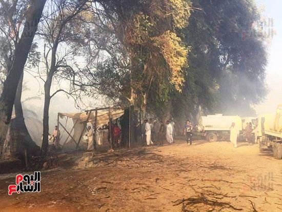 حريق-هائل-في-مزارع-نخيل-بقرية-القصر-بالوادي-الجديد-(24)